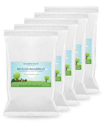 Yogurt starter 5 packs saver combo